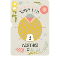Milestone Turn Wheel Photo Card - Baby - Age