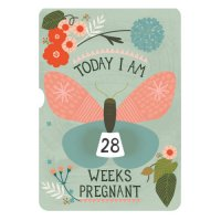 Milestone Turn Wheel Photo Card - Pregnancy
